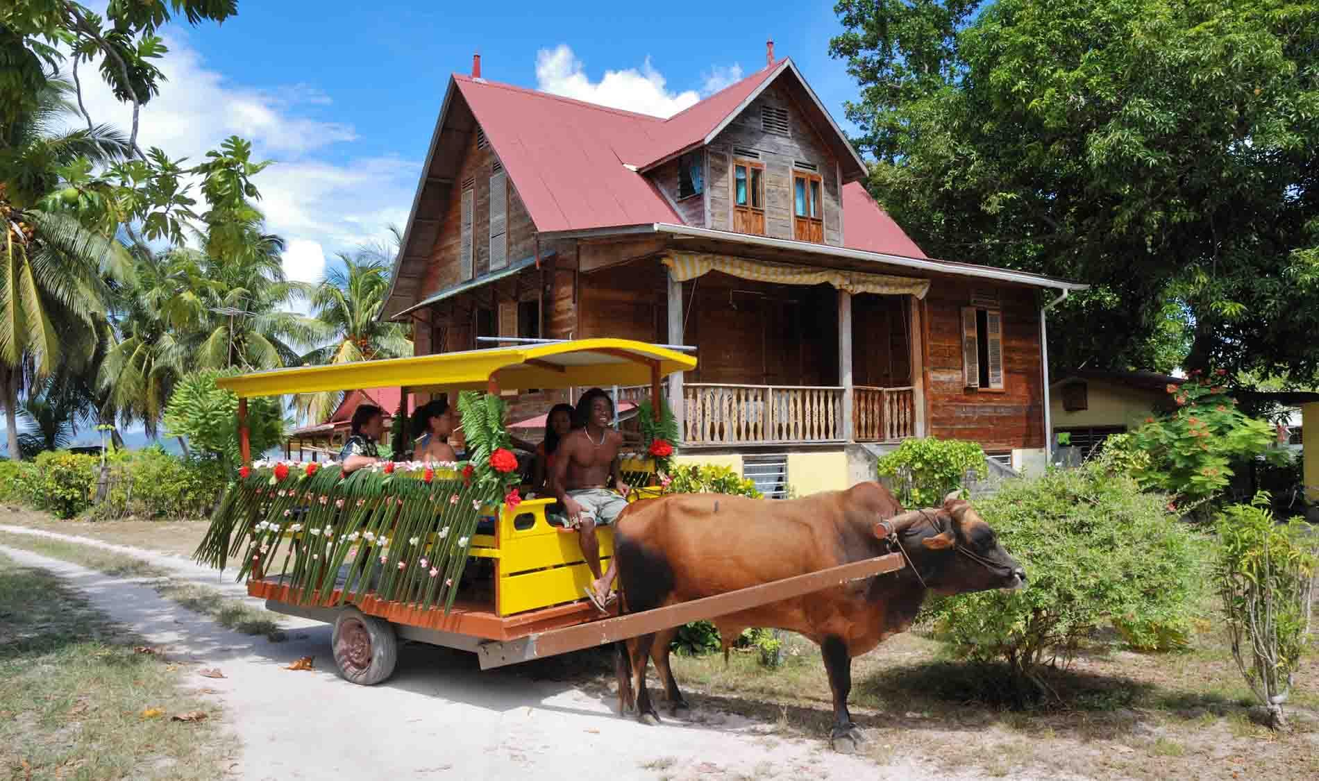 Min lille favoritt på Seychellene