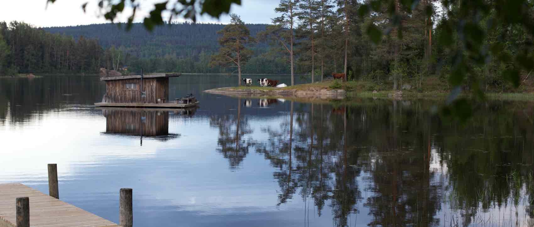 Svensk idyll:Ved innsjøen Eldan, ligger campen Naturbyn