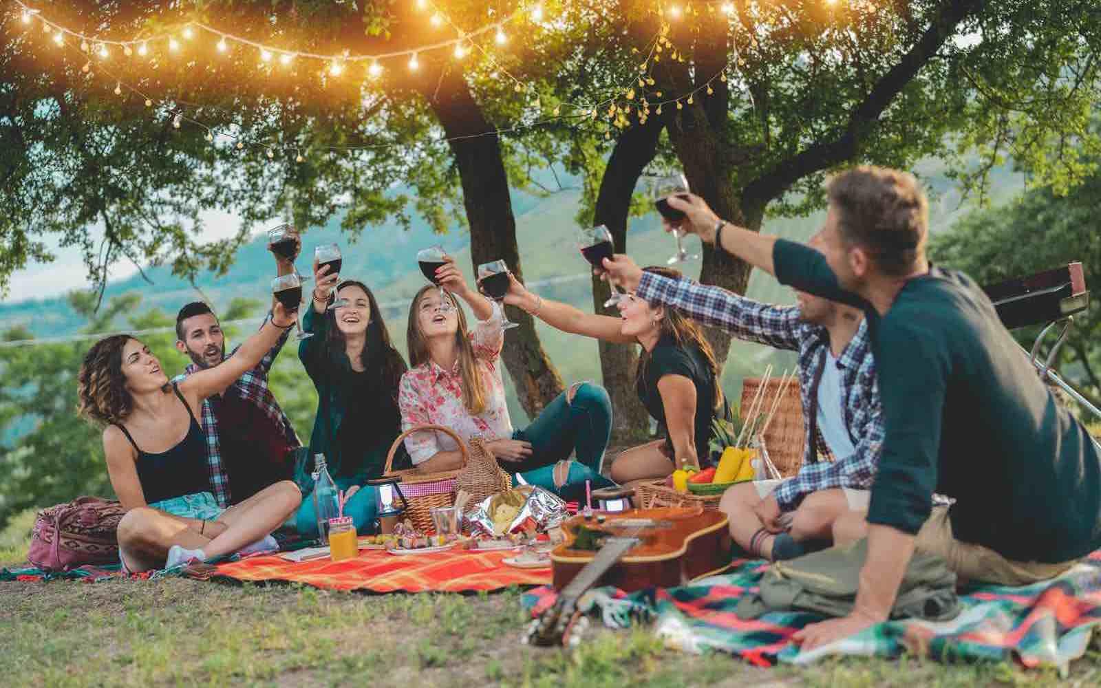 Glade enner samlet til piknik, selvsagt med vin - og en gitar