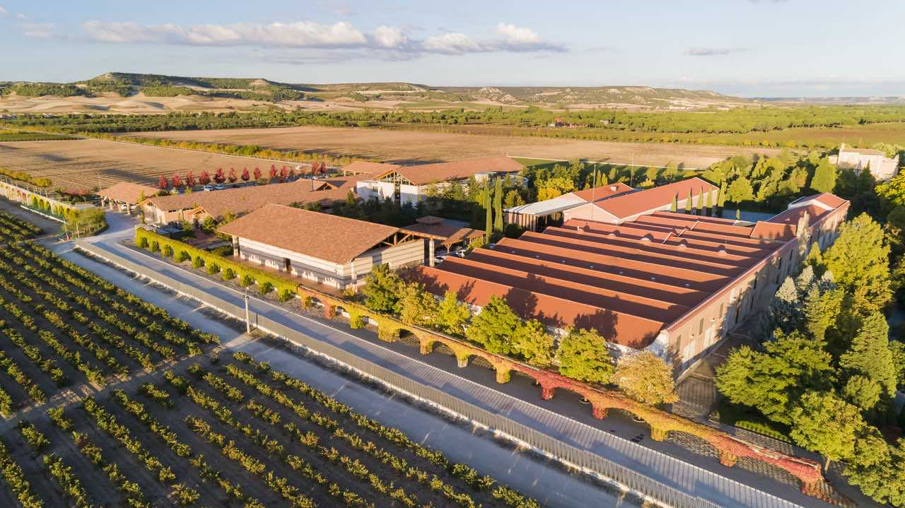 Vingården i Ribera del Duero er kjent for sine komplekse viner