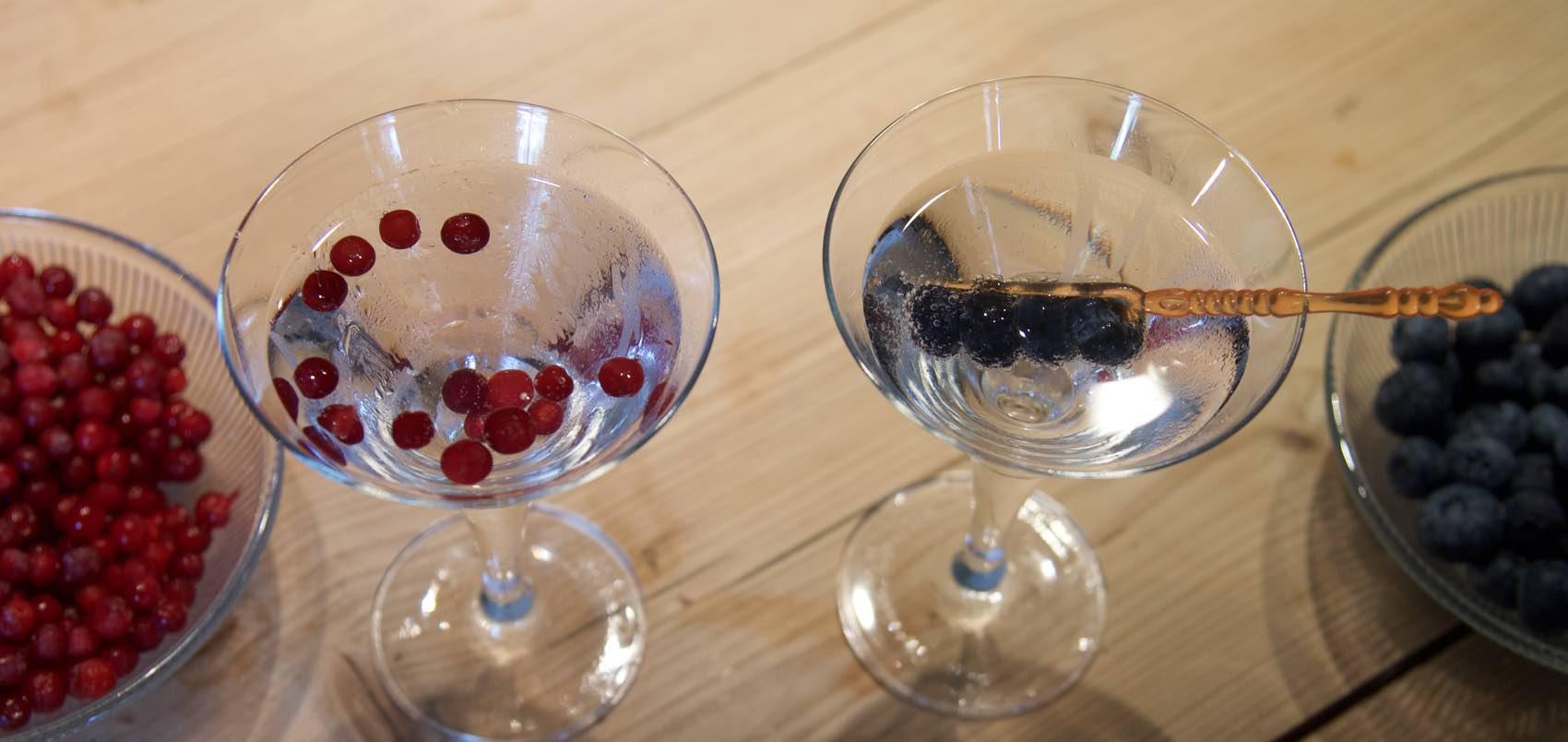 En global cocktail, mikset for arktiske forhold med både midnattssol og nordlys.