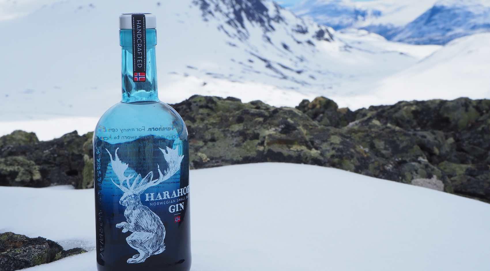 Harahorn gin og fjellet Harahorn, som ligger i Hemsedal 1581 m.o.h